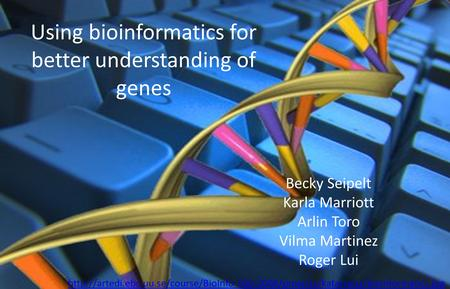 Using bioinformatics for better understanding of genes Becky Seipelt Karla Marriott Arlin Toro Vilma Martinez Roger Lui