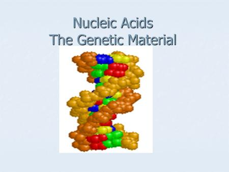 Nucleic Acids The Genetic Material. Two types of Nucleic acids RNA RNA DNA DNA.