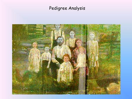 Pedigree Analysis What's in YOUR family tree? Pedigree Analysis.