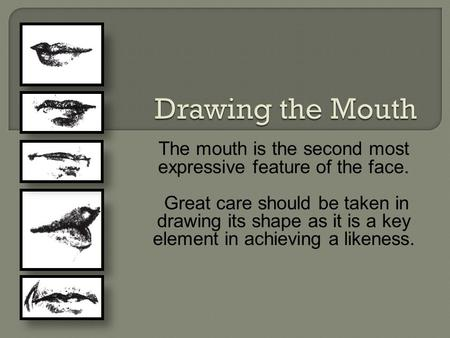 The mouth is the second most expressive feature of the face. Great care should be taken in drawing its shape as it is a key element in achieving a likeness.
