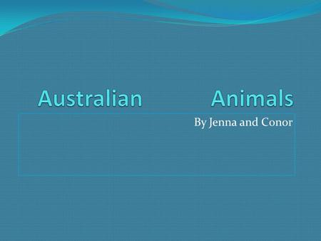 By Jenna and Conor. Kangaroo Kangaroos of different types live in all areas of Australia, from cold-climate areas and desert plains, to tropical rainforests.