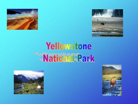 Our First National Park In 1872, U.S. Grant signed a bill making Yellowstone our first national park.
