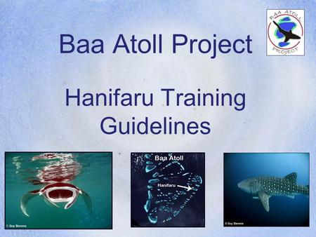 Baa Atoll Project Hanifaru Training Guidelines. Baa Atoll Project Mass Feeding Aggregations of Manta Rays and Whale Sharks at Hanifaru All six resorts.