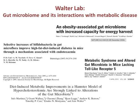 Walter Lab: Gut microbiome and its interactions with metabolic disease