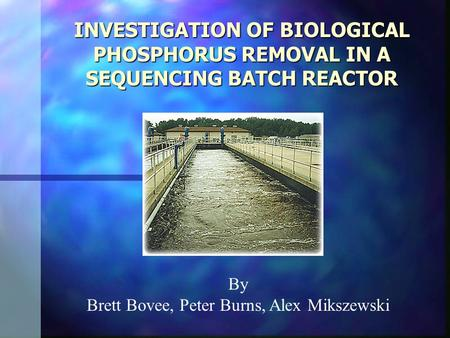 INVESTIGATION OF BIOLOGICAL PHOSPHORUS REMOVAL IN A SEQUENCING BATCH REACTOR INVESTIGATION OF BIOLOGICAL PHOSPHORUS REMOVAL IN A SEQUENCING BATCH REACTOR.