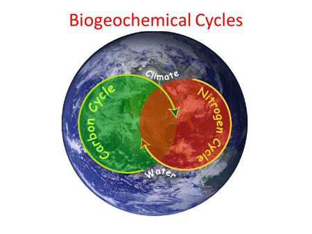 Biogeochemical Cycles Defined: Movement of water through the atmosphere 75% of the earth is water 99% of water undrinkable (salty & frozen) Water recycles.