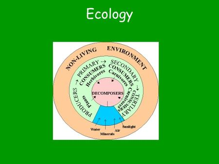 Ecology The study of interactions between organisms & their environment.