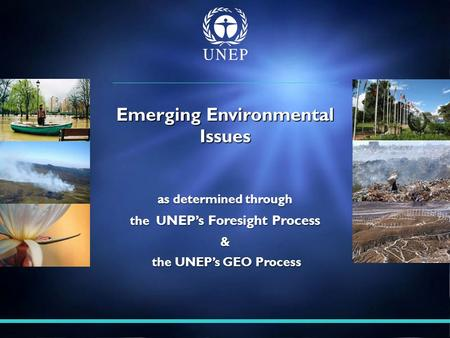 As determined through the U NEP's Foresight Process & the UNEP's GEO Process the UNEP's GEO Process Emerging Environmental Issues.