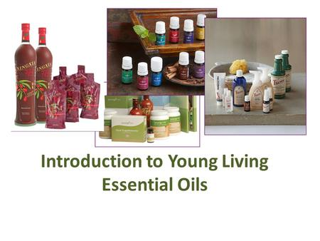 Introduction to Young Living Essential Oils. Why Young Living We believe there is a better way to get and stay healthy and every human and animal in the.