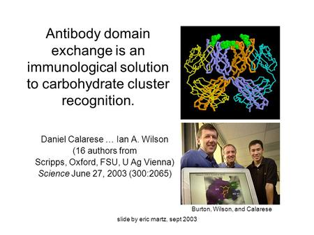 Slide by eric martz, sept 2003 Antibody domain exchange is an immunological solution to carbohydrate cluster recognition. Daniel Calarese … Ian A. Wilson.