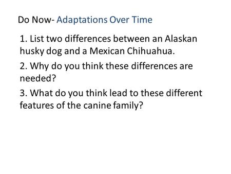 Do Now- Adaptations Over Time 1. List two differences between an Alaskan husky dog and a Mexican Chihuahua. 2. Why do you think these differences are needed?