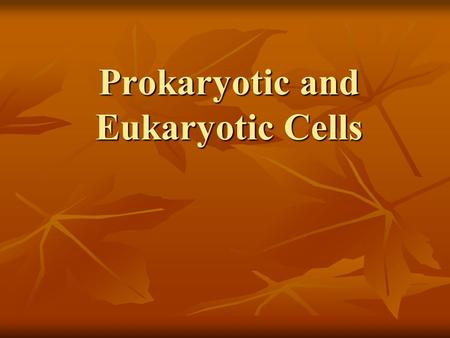 Prokaryotic and Eukaryotic Cells. Two Types Of Cells 1. PROKARYOTE 2. EUKARYOTE.