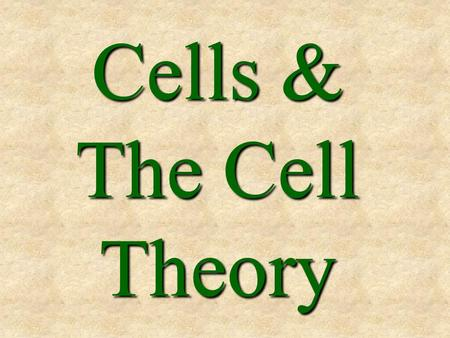 Cells & The Cell Theory.