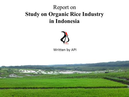 Report on Study on Organic Rice Industry in Indonesia Written by API.