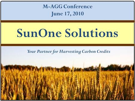SUNONE SOLUTIONS Your Partner for Harvesting Carbon Credits SunOne Solutions M-AGG Conference June 17, 2010.