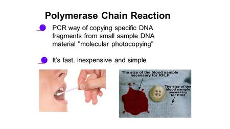 PCR way of copying specific DNA fragments from small sample DNA material molecular photocopying It's fast, inexpensive and simple Polymerase Chain Reaction.