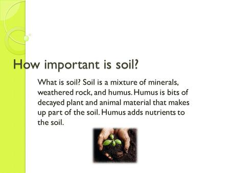 How important is soil? What is soil? Soil is a mixture of minerals, weathered rock, and humus. Humus is bits of decayed plant and animal material that.