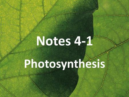 Notes 4-1 Photosynthesis. Sources of Energy Nearly all living things obtain energy either directly or indirectly from the energy of sunlight captured.