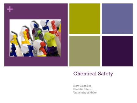 + Chemical Safety Siew Guan Lee Dietetic Intern University of Idaho.