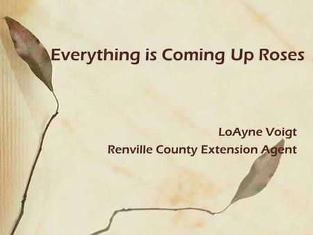 Everything is Coming Up Roses LoAyne Voigt Renville County Extension Agent.