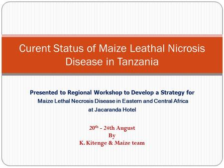 Curent Status of Maize Leathal Nicrosis Disease in Tanzania Presented to Regional Workshop to Develop a Strategy for Maize Lethal Necrosis Disease in Eastern.