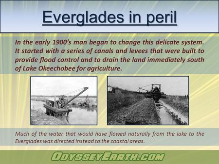 In the early 1900's man began to change this delicate system. It started with a series of canals and levees that were built to provide flood control and.