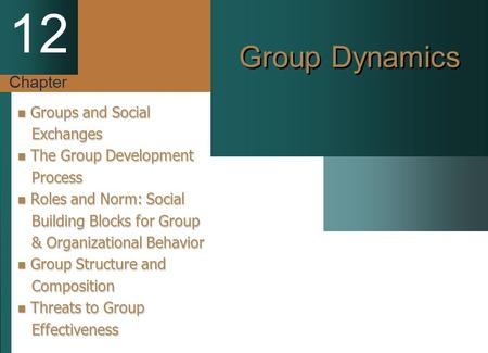 Chapter 12 Group Dynamics Groups and Social Groups and Social Exchanges Exchanges The Group Development The Group Development Process Process Roles and.