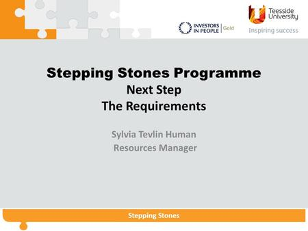 Stepping StonesStepping Stones Programme Stepping Stones Stepping Stones Programme Next Step The Requirements Sylvia Tevlin Human Resources Manager.