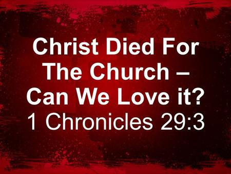 Christ Died For The Church – Can We Love it? 1 Chronicles 29:3.
