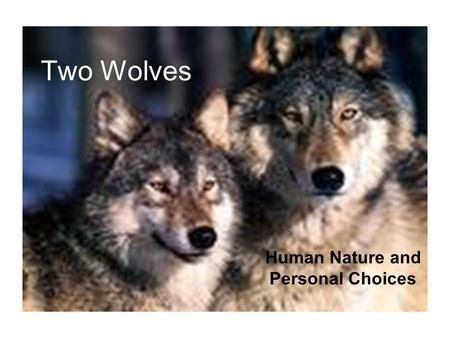 Two Wolves Human Nature and Personal Choices. Objective: Students will respond to questions regarding the duality of human nature and the choices we make.