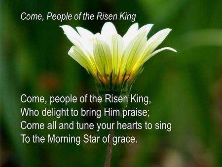 Come, people of the Risen King,Come, people of the Risen King, Who delight to bring Him praise;Who delight to bring Him praise; Come all and tune your.
