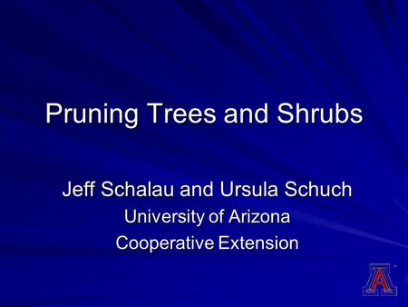 Pruning Trees and Shrubs Jeff Schalau and Ursula Schuch University of Arizona Cooperative Extension.