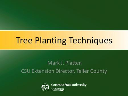 Tree Planting Techniques Mark J. Platten CSU Extension Director, Teller County.