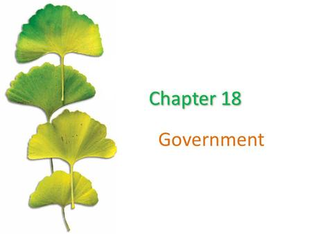 Government. Chapter Outline ©2015 McGraw-Hill Education. All Rights Reserved. 2 Public Goods Private Provision of Public Goods Public Choice Income Distribution.