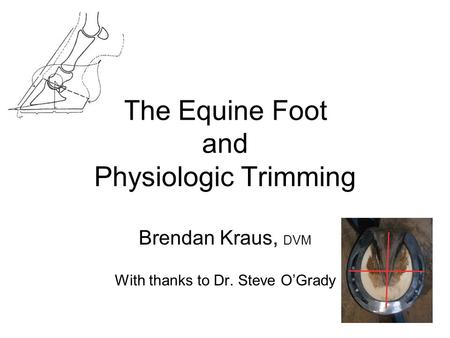 The Equine Foot and Physiologic Trimming Brendan Kraus, DVM With thanks to Dr. Steve O'Grady.