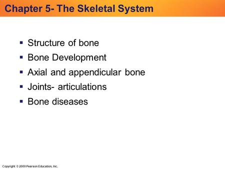 Copyright © 2009 Pearson Education, Inc. Chapter 5- The Skeletal System  Structure of bone  Bone Development  Axial and appendicular bone  Joints-