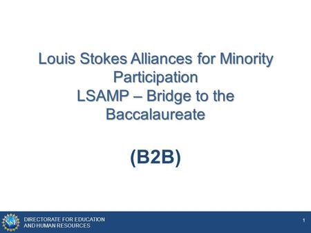 DIRECTORATE FOR EDUCATION AND HUMAN RESOURCES 1 Louis Stokes Alliances for Minority Participation LSAMP – Bridge to the Baccalaureate (B2B)
