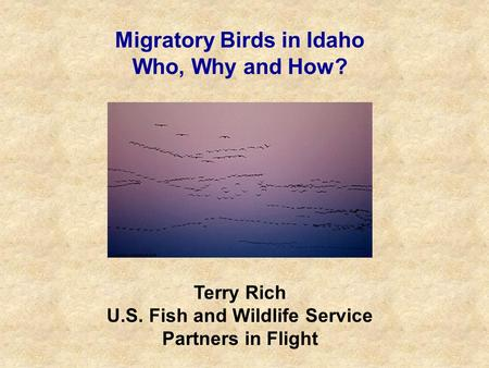 Migratory Birds in Idaho Who, Why and How? Terry Rich U.S. Fish and Wildlife Service Partners in Flight.
