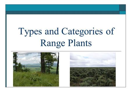 Types and Categories of Range Plants. Objectives 1. Categorize plants according to: growth form, life span, season of growth, origin, and forage value.