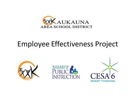 Employee Effectiveness Project. What is the Effectiveness Project? A 360° professional focused, research based process designed to deliver the highest.