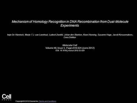 Mechanism of Homology Recognition in DNA Recombination from Dual-Molecule Experiments Iwijn De Vlaminck, Marijn T.J. van Loenhout, Ludovit Zweifel, Johan.