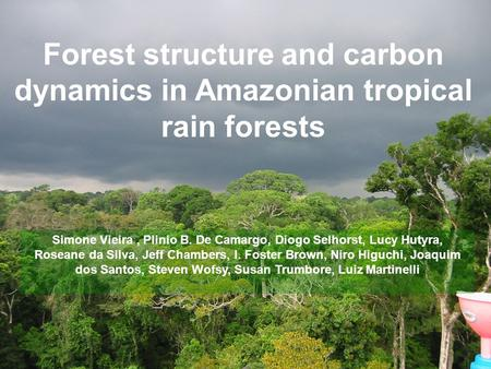 Forest structure and carbon dynamics in Amazonian tropical rain forests Simone Vieira, Plinio B. De Camargo, Diogo Selhorst, Lucy Hutyra, Roseane da Silva,