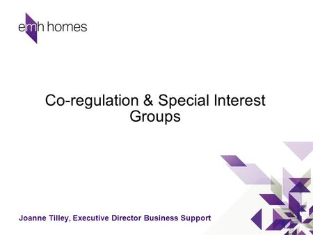 Co-regulation & Special Interest Groups Joanne Tilley, Executive Director Business Support.