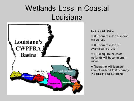 Wetlands Loss in Coastal Louisiana By the year 2050:  600 square miles of marsh will be lost  400 square miles of swamp will be lost  1,000 square miles.