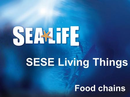 SESE Living Things Food chains.