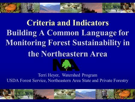 Criteria and Indicators Building A Common Language for Monitoring Forest Sustainability in the Northeastern Area Terri Heyer, Watershed Program USDA Forest.