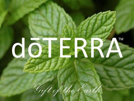 """Gift of the Earth"". Natural aromatic compounds in the seeds, bark, stems, roots, flowers, and other parts of plants. © 2008 dōTERRA Holdings, LLC, Unauthorized."