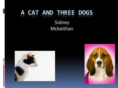 Sidney Mckeithan A Cat and Three Dogs Once upon a time there was a cat that went to a house in the woods. The cat did not know where it was. It had been.