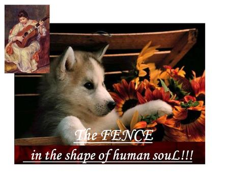 The FENCE in the shape of human souL!!! There was a small boy, who got upset easily… as that happened often…