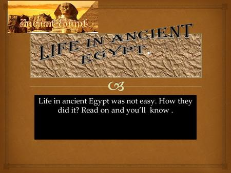 Life in ancient Egypt was not easy. How they did it? Read on and you'll know.